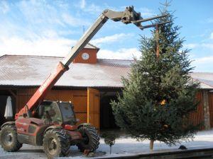 Dez. 2012: Weihnachtsbaum