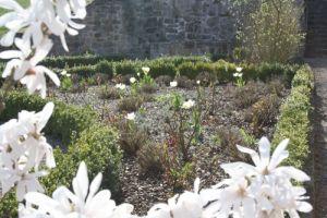 April 2013: Garten blüht endlich
