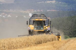 Aug. 2013: Getreideernte