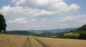Ausblick und Schloss 2011